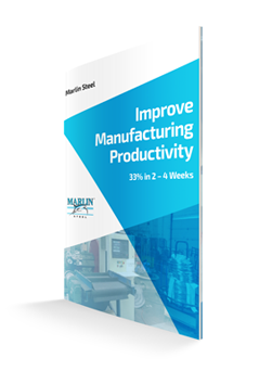 Improve your manufacturing productivity today- with the help of this whitepaper!